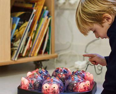 Alumno-interactuando-con-robots-en-Sek